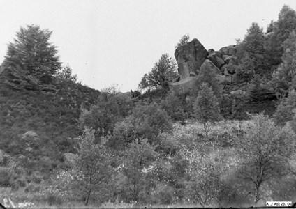 Fotot från första hälften av 1900-talet