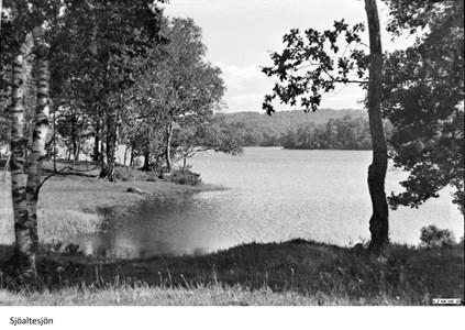 Foto Sjöaltesjön 5