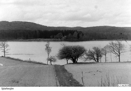 Foto Sjöaltesjön 7