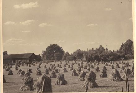 Höghult 1940-talet.jpg
