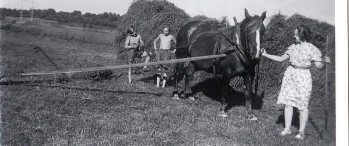 Sörby 1950-talet