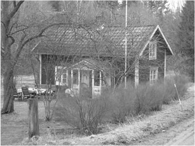Skogsberg.JPG